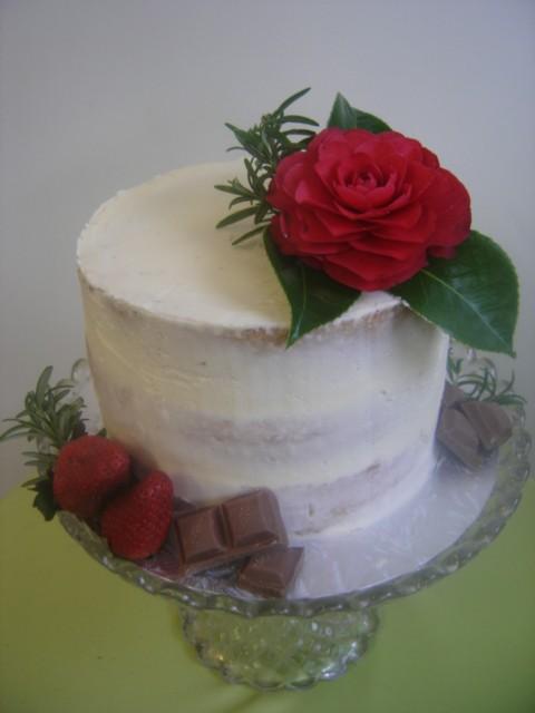 Semi Naked Cake Treat